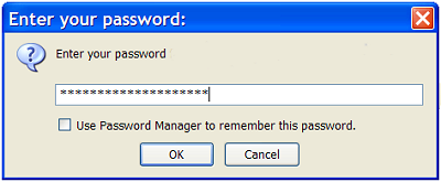 saving Thunderbird password